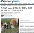 Discovery_dogs